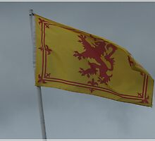 The Royal Flag of Scotland. by youmeus