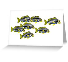 School of Oriental Sweetlips Reef Fish  Greeting Card