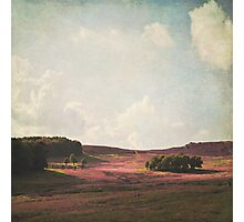 Fields of Heather Photographic Print