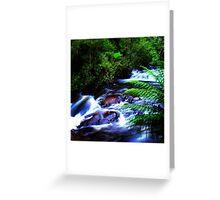Snobs Creek  Greeting Card