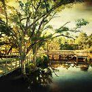 Inner Harbor Park  by Jonicool