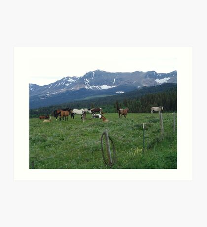 BLACKFOOT HORSE BAND - NEAR BROWNING, MT Art Print