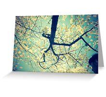 Blue Cherries Greeting Card