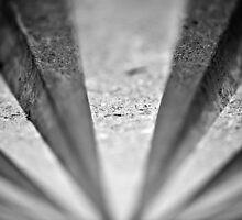 Vanishing Points by Paul  Reece