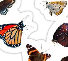 Butterfly Mania  Sticker