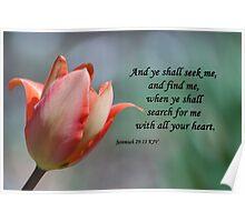 Jeremiah 29 13 Poster