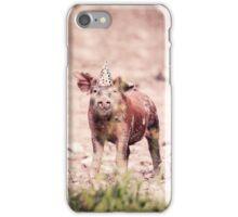 Party Pigs Colour photograph  iPhone Case/Skin