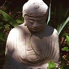 Buddha In The Garden of Shadows by NovaCynthia
