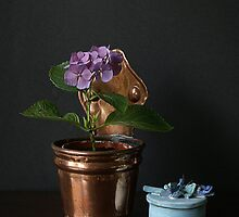 Hortensia mauve. by Gilberte