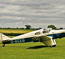 Miles M.3 Falcon circa 1934 by Chris Thaxter