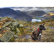The HDR Terrier....Fleetwith Pike Photographic Print