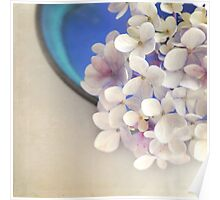 Hydrangeas in blue bowl Poster