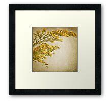 Sepia gold Framed Print