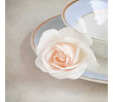 The Sweetest Rose Photographic Print