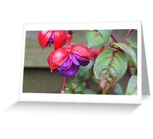 i love flowers Greeting Card