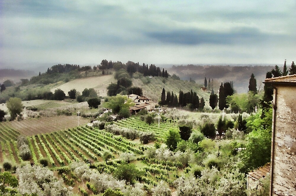 Tuscan Hills by jules572