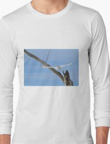 Into the wild blue yonder Long Sleeve T-Shirt