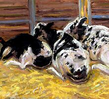 Snoozing Moo's by Cameron Hampton