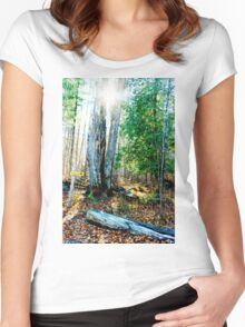 Sunshine through the trees Women's Fitted Scoop T-Shirt