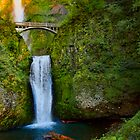 Last light- Multnomah Falls by Chris Perry