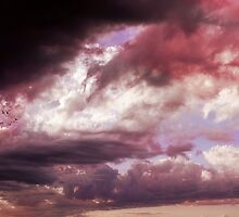 Wrong side of Heaven by Heather King