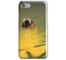 hovering for honey iPhone Case/Skin