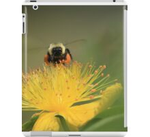 hovering for honey iPad Case/Skin