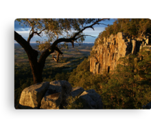 Late afternoon light on Mt French. Scenic Rim.  Canvas Print