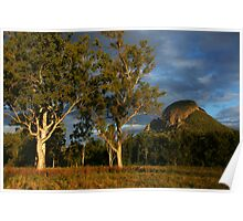 Afternoon light- Mount Greville. Scenic Rim. Queesland. Poster