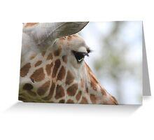 Gentle Giraffe Greeting Card
