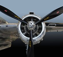 B-25 Prop by WildBillPho