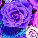 Colorful Roses Collage-Cool Tones by artonwear
