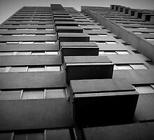 Public housing tenements, Redfern, Sydney by Terry Rodger Smith