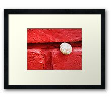 Snug Snail Sticking Out Framed Print