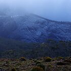 Snow dusting in Mount Field National Park by Traffordphotos