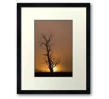 Golden Fog # 2 Framed Print