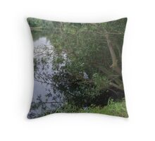 lakes in the park Throw Pillow