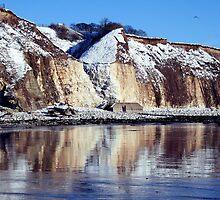 """Icing  Sewerby cliffs"" by Merice Ewart Marshall - LFA"