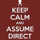 Keep Calm and Assume Direct Control by Jarrod Kamelski