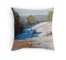 Australian Winter Sunny Corner Throw Pillow