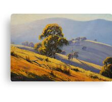 Summer Landscape Turon Canvas Print