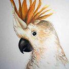 bird by Ongie