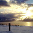 """Sunburst in the Snow""  by Merice  Ewart-Marshall - LFA"