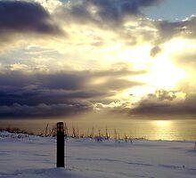 """Sunburst in the Snow""  by Merice Ewart Marshall - LFA"