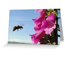 Flight Bee, Cleared To Land Greeting Card