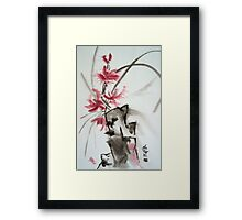 Chinese rose Framed Print
