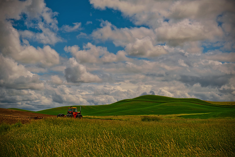 Summer In The Country by Dan Mihai