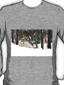 I am watching you - Timber Wolf T-Shirt