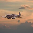 Spitfire - Evening Return by warbirds