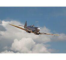 Spitfire- Portrait Photographic Print